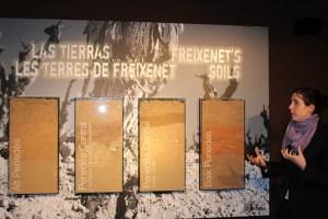 Freixenet Gold sponsor IWINETC 16