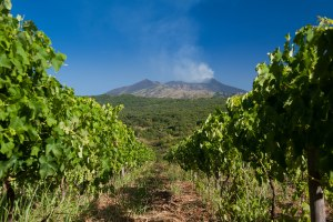 Etna wines to speak loudly at IWINETC 2017