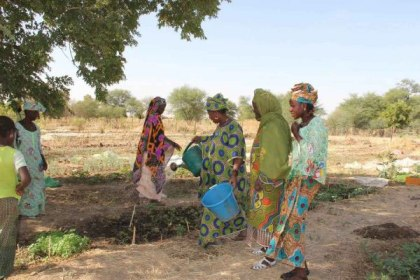Drought in the Sahel region makes farming and gardening very difficult for the women of Yelimne, Mali. (Photo: WFP/Daouda Guirou)