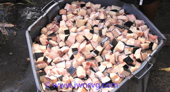 "Whale blubber wait further processing into ""crisps"" and oil in Barrouallie on Sunday. (IWN photo)"