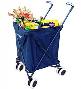 Shoppping cart