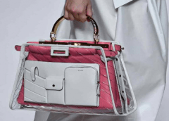 Lady Bags Fashion Trend 2019