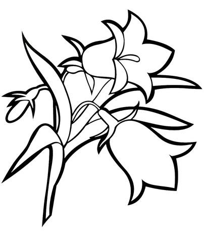 Раскраски цветы Картинки для детей бесплатно