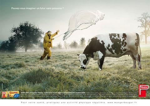Remède de cheval sauce roumaine - Crédit photo izart.fr