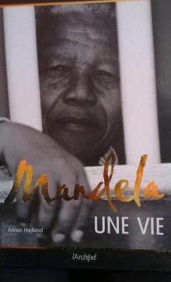 Mandela héros enfin libre - Crédit photo izart.fr