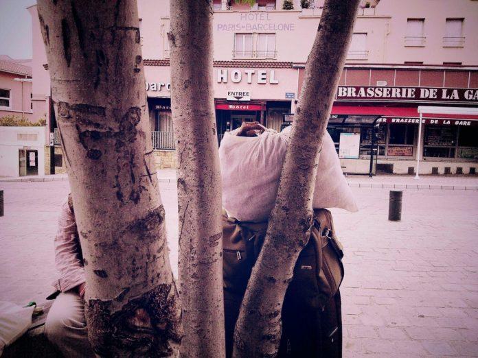 Sinon un sandwich aux feuilles d'arbres - Crédit photo izart.fr