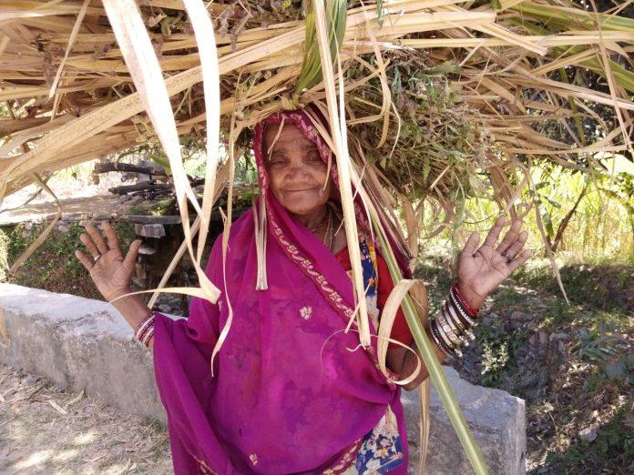 J'ai encore retrouvé une vieille connaissance en Inde - Crédit photo izart.fr
