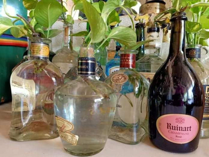 L'alcool non le COVID-19 oui - Crédit photo izart.fr