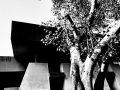 De murmures en cris d'arbres - Crédit photo izart.fr