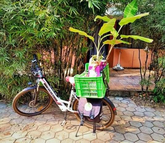 Ton vélo tu oublieras - Crédit photo izart.fr