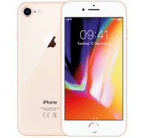 Apple iPhone 8 Gold with Acer Laptop