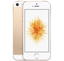 Apple iPhone SE Gold with Laptop