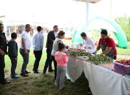 Piknik İkramları Kurumsal Piknik Organizasyonları İzmir
