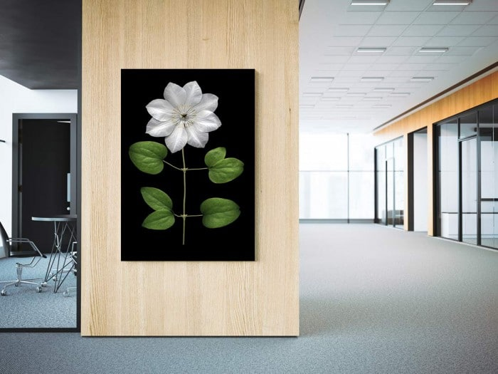d coration bureau professionnel blog toile design et moderne d 39 izoa. Black Bedroom Furniture Sets. Home Design Ideas