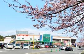 2019-鹿島千本桜-ジュエリー庄司-01