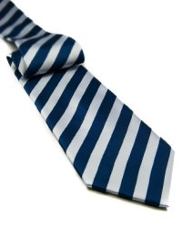 Blue and White Tie in Blue/White