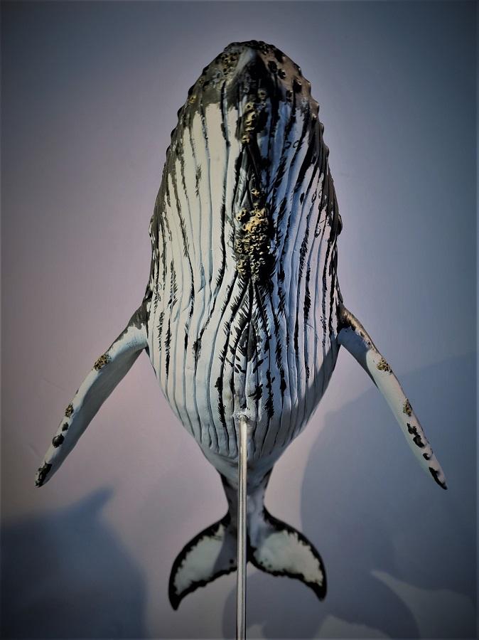 nehalennia devossi paleontologisch wetenschappelijk model in opdracht van Historyland, gebruikt voor een animatiefilm. De film is geanimeerd door Twisted