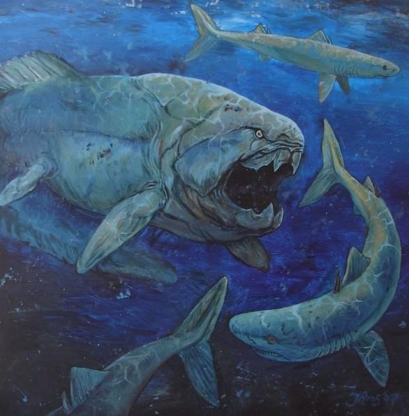 Paleoart schildering van de uitgestorven vis genaamd dunkleosteus. Jaap Roos heeft een wetenschappelijke artistieke reconstructie gemaakt van de dunkleosteus.