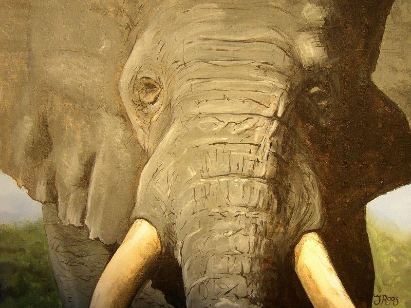 Dier schilderij olifanten hoofd, geschilderd door hedendaags kunstschilder Jaap Roos art.
