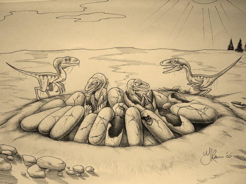 Paleontologisch kunstwerk getekend door Jaap Roos. Baby raptors kruipen uit de eieren van een nest.