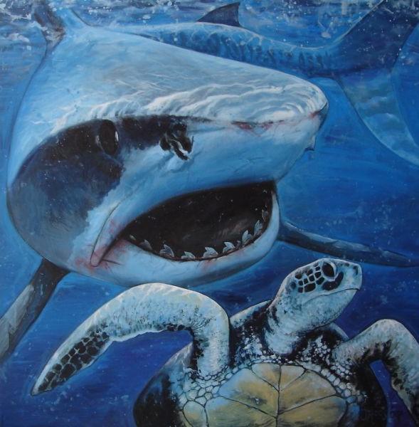 Mural van de tiger shark chasing a turtle. Made by nature artist Jaap Roos