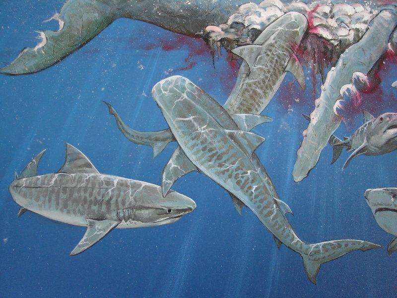 Realistisch schilderij op doek van tijgerhaaien die walvis aanvallen. Ontworpen en geschilderd door animalier Jaap Roos