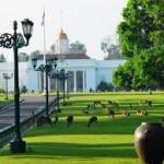 Kebun Raya Bogor (photo: google)