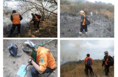 144 Hektar Lahan Di Gunung Ciremai Ludes Terbakar