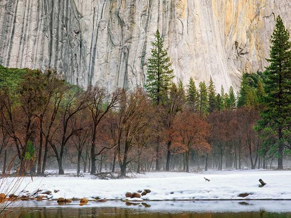 Mañana de invierno en Yosemite - jabonnatural