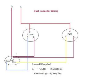 Top Hvac Dual Capacitor Wiring Diagram Images for