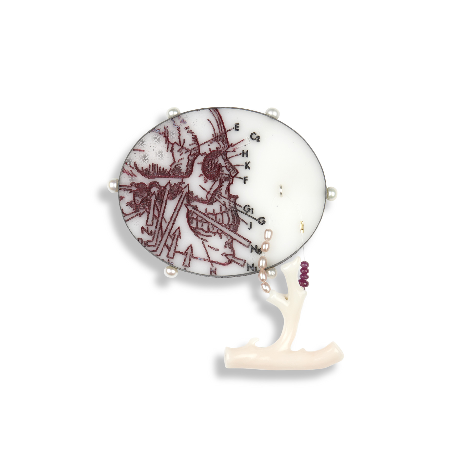 'Fragments & Curiosities' 2011. Brooch; Oxidised silver, Perspex, cultured pearl, 18ct Y gold detail, branch coral, ruby