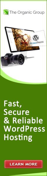 Web hosting offer