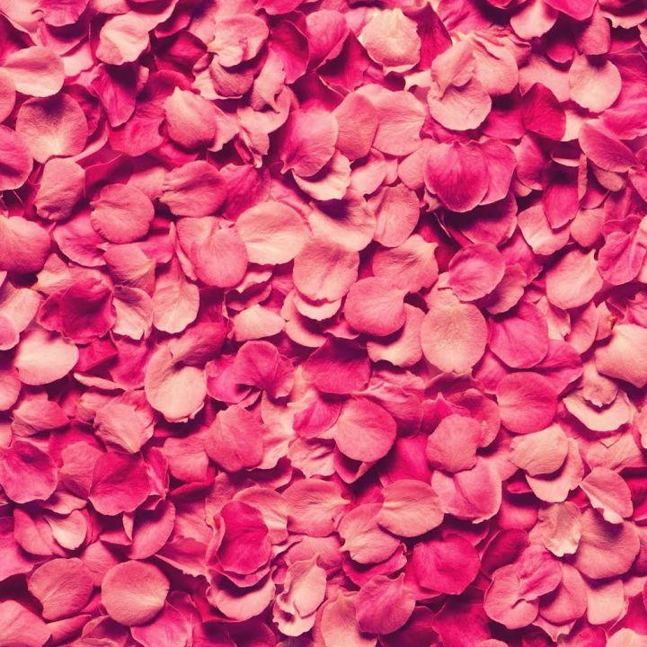 ピンク05