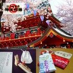 神田神社桜