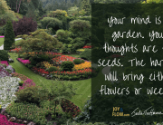 Your Mind Is a Garden Your Thoughts Are the Seeds