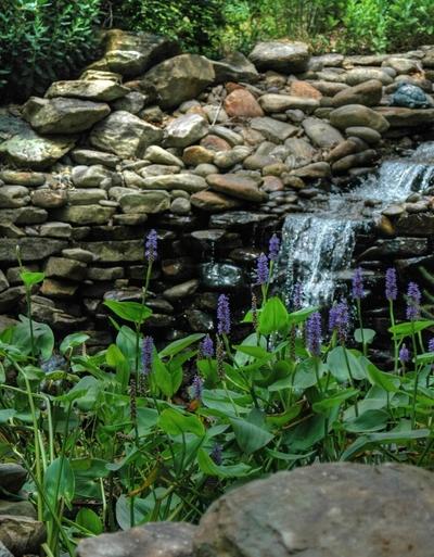 HDR image taken on July 4 2007 at Badin Lake, NC.
