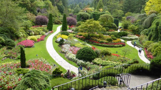 The Sunken Garden at Butchart Gardens.  This was an old limestone quarry.