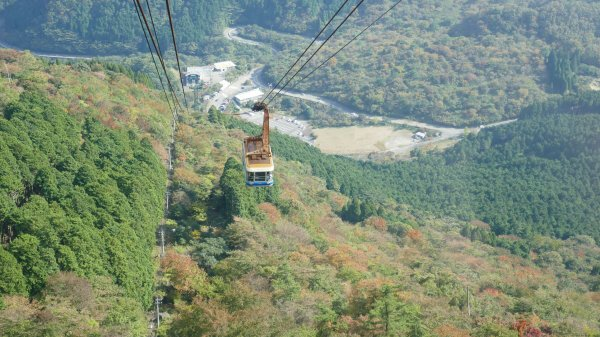 One of the steepest ropeways we have been on.