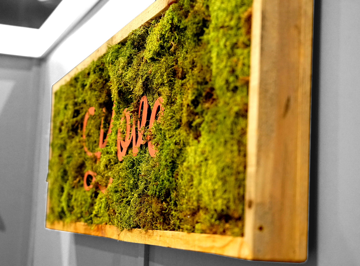 Build Your Own Indoor Living Wall. living room unique indoor ...