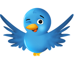 Winking Twitter Bird