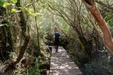 Parque National de Chiloe