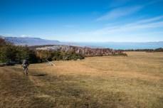 Patagonian meadows