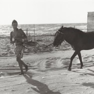 Young Man with horse at the beach