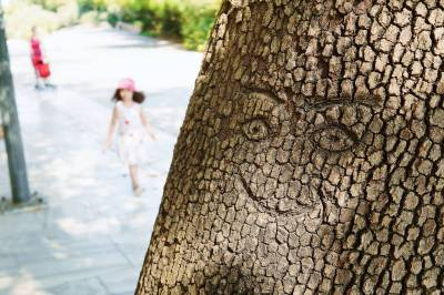A smiling face carved on a tree.