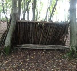 lean-to debris shelter