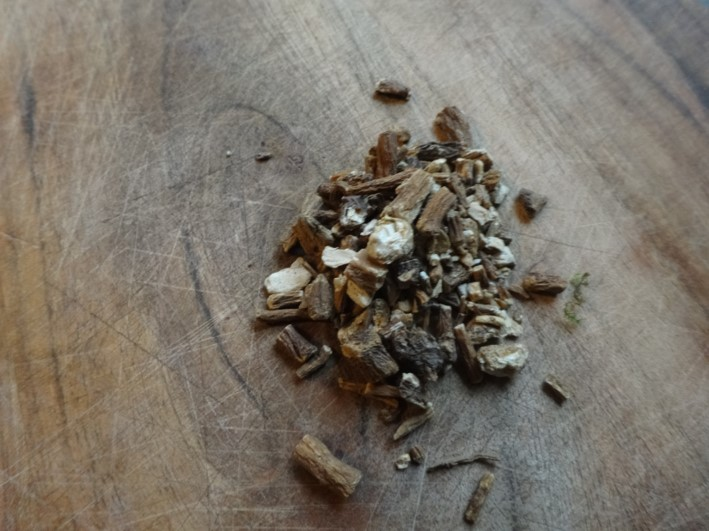 dandelion decoction, herbal medicine, south east, Kent