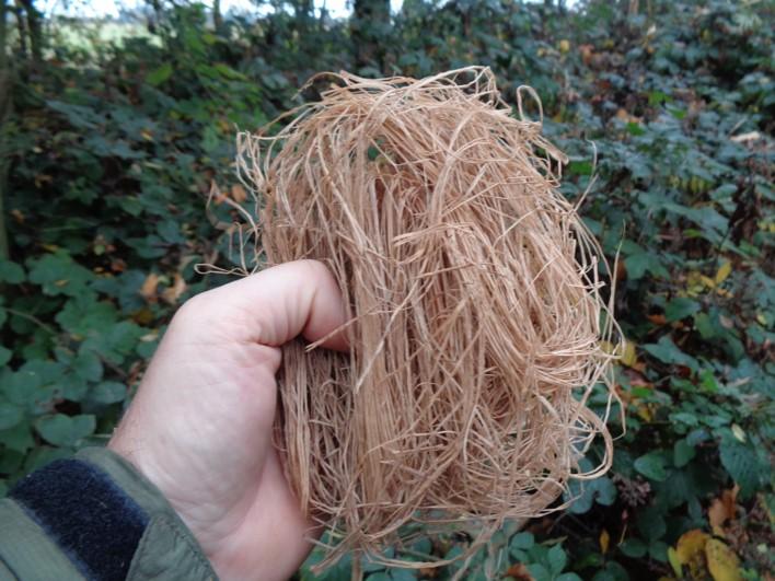 inner barks | tinder | tinders | bushcrfat | Kent | south east | London