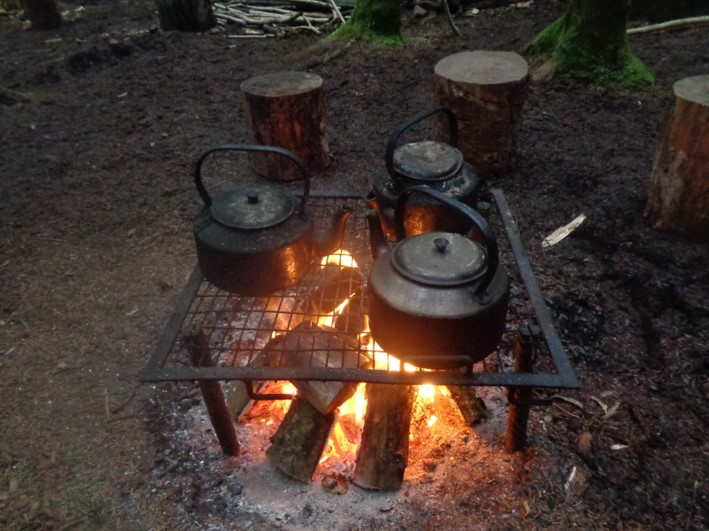 what makes good firewood | bushcraft | fire lighting | Kent | south east | London