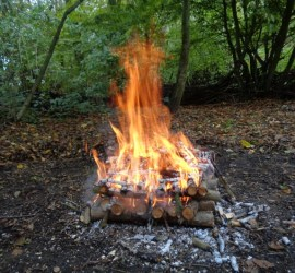 what makes godd fire wood | fire lays | bushcraft | Kent | south east | London