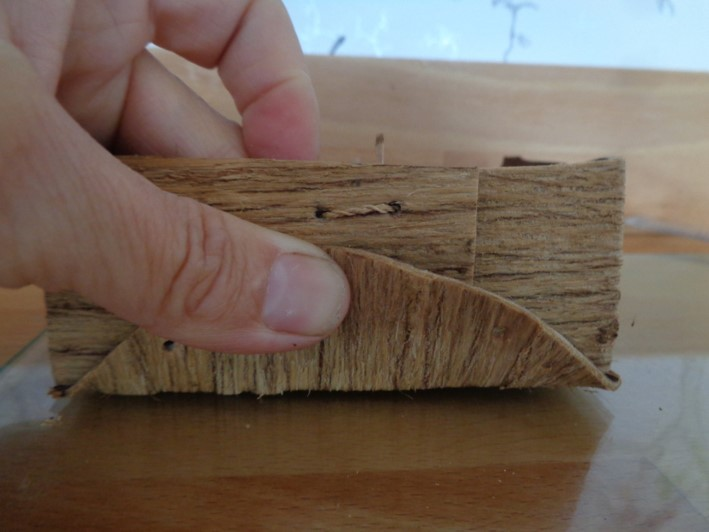 folded bark containers | bushcraft | Kent | south east | London